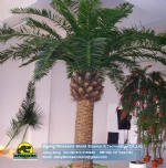 Atificial Tree /Artificial Coconut Tree DWT010